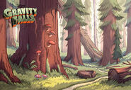 Game postcard creator forest