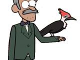 Tipo del pájaro carpintero