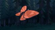 S1e11 huge butterfly