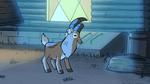 S1e3 goat