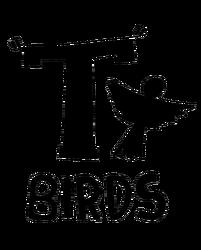 T-birds.png