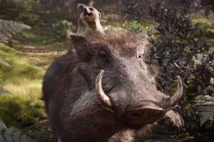Timon&Pumbaa(liveaction)