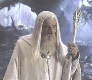 Gandalf .jpg