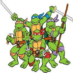 The Teenage Mutant Ninja Turtles