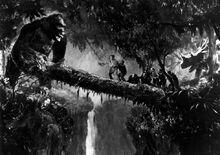 King Kong and the log.jpg