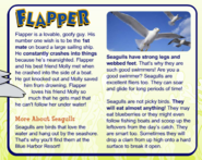 FlapperInfo