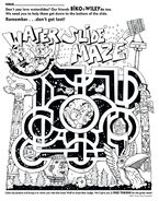 Water Slide Maze