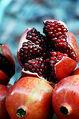 Pomegranate DSW