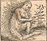 640px-Nuremberg chronicles - Strange People - Hairy Lady (XIIv)