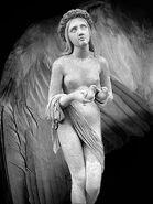 Angel-Wing