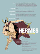 Hermes-Pin-up-767x1024
