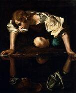 Narcissus 03