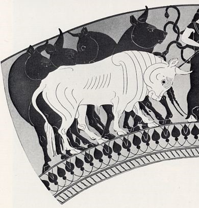 Cattle of Geryon