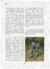 Funkia Page (vision 2).png