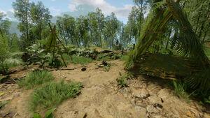 Bamboo Camp (2) 52W 17S.jpg