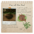 Vine of Soul Notebook Page (Tutorial).png