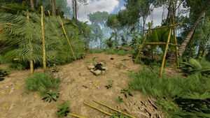 Bamboo Camp (1) 52W 17S.jpg