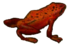 Red Frog.png