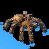 Goliath Birdeater Spider.png