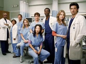 Le-cast-de-Grey-s-Anatomy-dans-la-saison-1 max1024x768.jpg