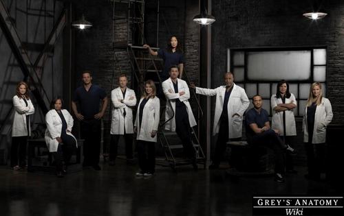 Wiki Grey's Anatomy