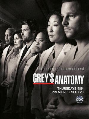 Greys-Anatomy-Season-7-Poster.jpg