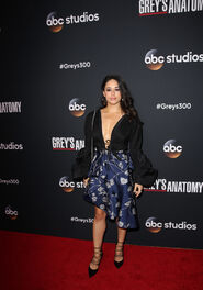 JeanineMason300party
