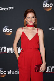SarahDrew300party
