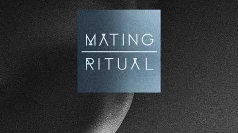"""""""Song Beneath the Song"""" - Mating Ritual"""