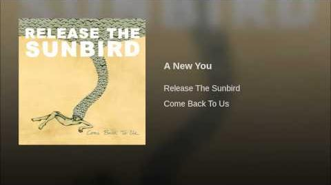 """""""A New You"""" - Release the Sunbird"""