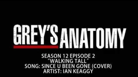 """""""Since U Been Gone"""" - Ian Keaggy"""