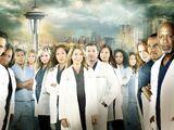 Season 10 (Grey's Anatomy)