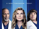 Season 18 (Grey's Anatomy)