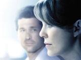 Staffel 11 (Grey's Anatomy)