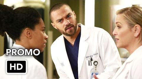 "Grey's Anatomy 13x12 ""None of Your Business"" Promo"
