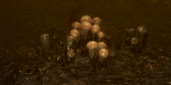 Swarming Hatchery Icon.png
