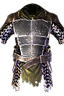 Fleshwarped Cuirass Icon.png