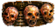 Headhunter's Trophy Icon.png