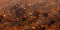 Rotting Croplands Icon.png