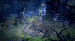 Ancient Grove Icon.png