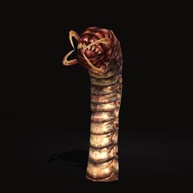 Earthbreaker Rotworm.png
