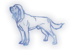Hound Constellation Icon.png