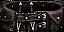 Shadowstalker's Belt Icon.png