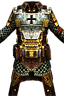 Chestguard of Redemption Icon.png