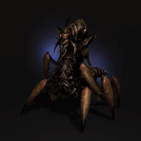 Dermapteran Vizier.png