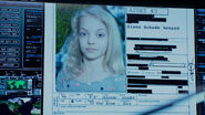 518-Diana HW File