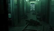 521-Dead HW agents