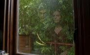 216-Window reflection