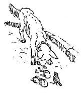 Hund und Sperling Maria Houben