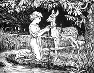 Bruederchen und Schwesterchen H J Ford 1890